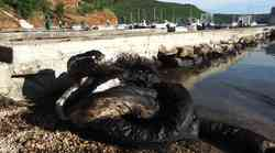 Video i foto galerija: Tirkizno more postalo crna mrlja - nafta u Raškom zaljevu otjerala turiste, uništila posao ribarima, školjkarima, izavala ekocid