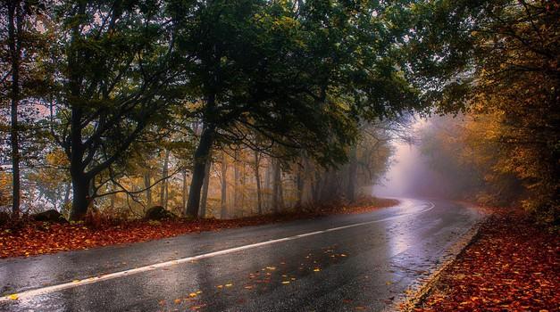 Mokro lišće na cesti opasno je kao i zimska poledica