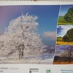 12 prekrasnih Romeovih fotografija za najljepši kalendar 2019., pogledajte ih sve i uživajte u čaroliji netaknute zagrebačke prirode (foto: Romeo Ibrišević)