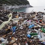 Englezi rade ono što Hrvati neće - čiste odvratno smeće s hrvatske obale  - uklonili tone otpada na Mljetu i za to dobili jedino 15 litara vina (foto: Romeo Ibrišević)