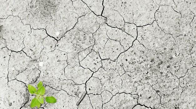 2019. najtoplija godina od početka mjerenja u Europi