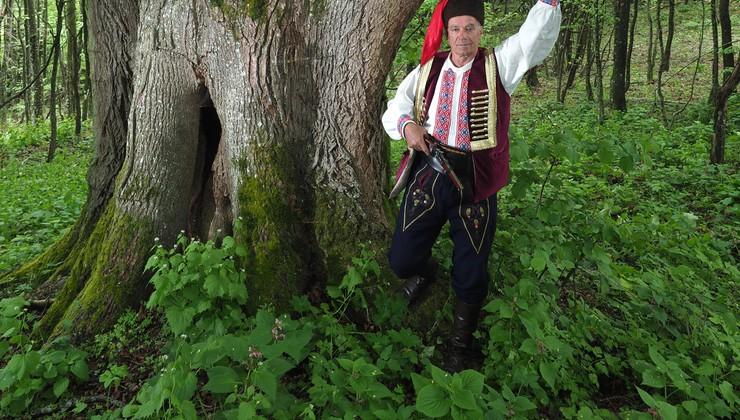 VIDEO Ona nije najstarija, ali je najveća lipa, a i drvo u Hrvatskoj obujma 9,17 m, a tek joj je 400. Lipe uskoro cvatu i sve je isto k'o i lani