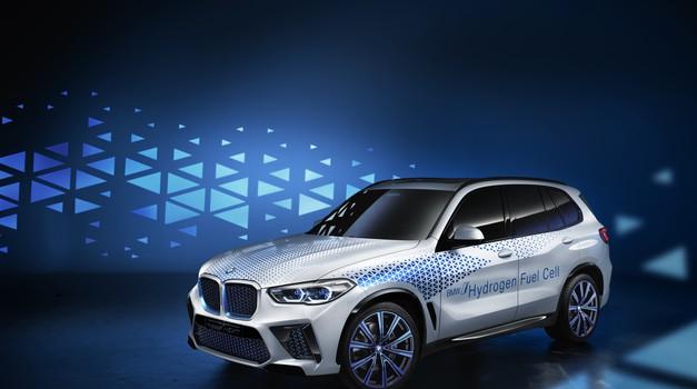 Hydrogen power BMW to fuel company's future