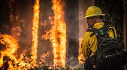 Ovoga ljeta povećan rizik od požara