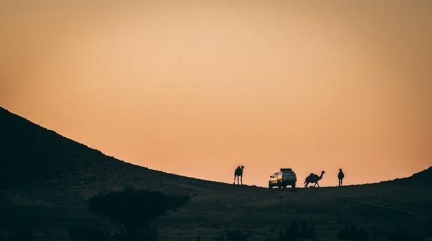 NAJ FOTO iz Saudijske Arabije i 4. najgledanijeg sportskog događaja na svijetu, legendarnog Rallyja Pariz - Dakar
