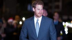 Princ Harry dobio je novi posao u Americi